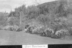 Our Backyard 1919