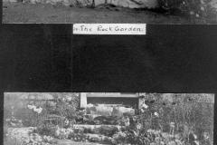 Rockgarden and Alpines