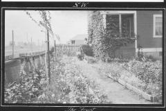 The Garden 1913 prt2